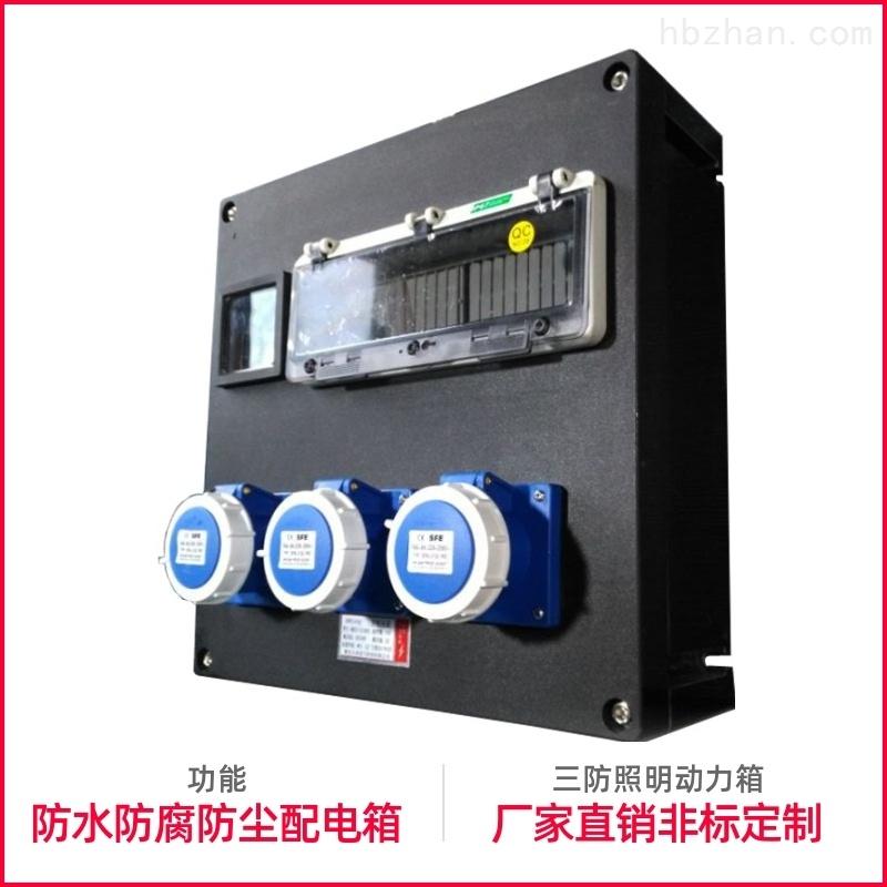 防水防腐配电箱照明动力箱IP:65