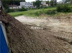 尾矿污泥干化设备 污泥脱水机工厂