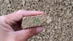 湖南洗砂砂石场泥浆处理设备价格