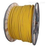 JHS防海水(水下)电缆