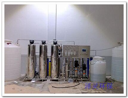 不锈钢0.5吨双级反渗透纯水设备