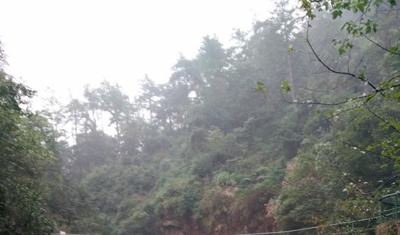 先河雷竞技官网手机版下载中标河南市鹤壁市大气污染防治空气质量监测项目