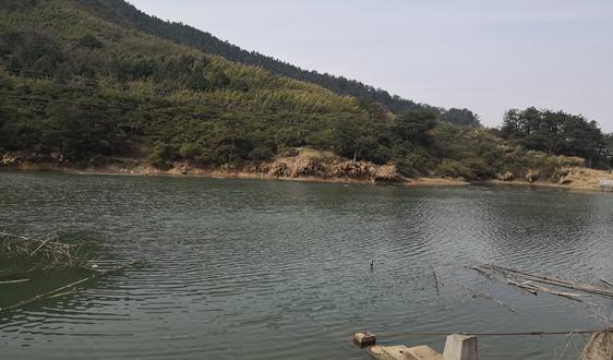 财政部关于印发《水污染防治资金管理办法》的通知