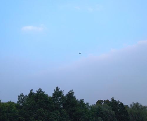 相约9月,再聚杭州——IG CHINA国际气体展