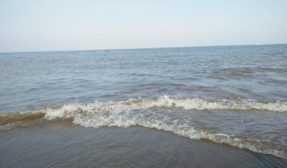 三大标段近60亿!东莞市水污染治理工程中标结果发布