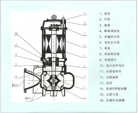 大流量潜水泵结构图