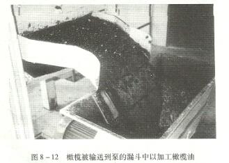 螺杆泵漏鬥