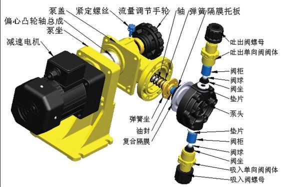 机械隔膜计量泵结构图