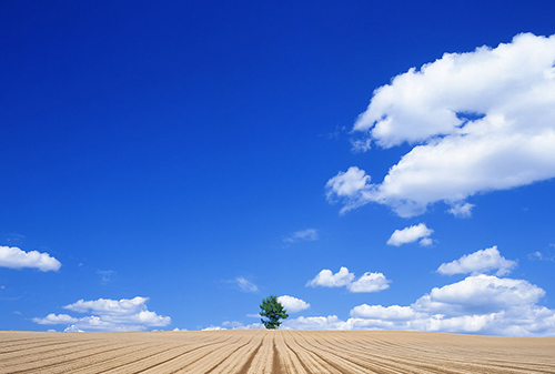 背景 壁纸 风景 天空 桌面 500_337