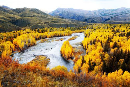在新疆塔里木盆地