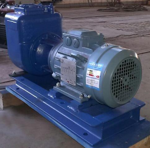 分体式强自吸污水泵