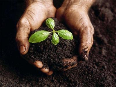 土壤检测,上饶市土壤检测机构