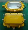 GBFC8120GBFC8120-100W防爆强光泛光灯