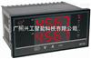 WP-D823-022-0808-2H2L双路数显表