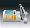 PP-25-P11专业型ph计/电导计/离子计