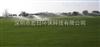 深圳南山 运动草坪场地喷灌设备供应高尔夫球场草坪喷淋喷灌工程