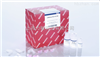 qiagen 217004 miRNeasy Mini Kit现货microRNA提取试剂盒